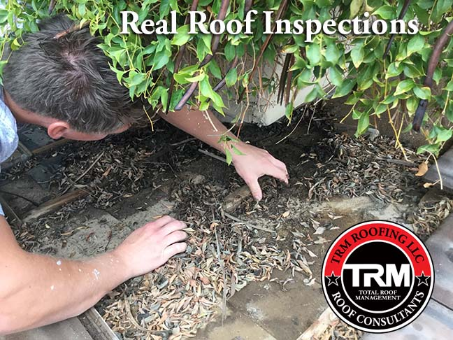 NRCIA Roof Inspections