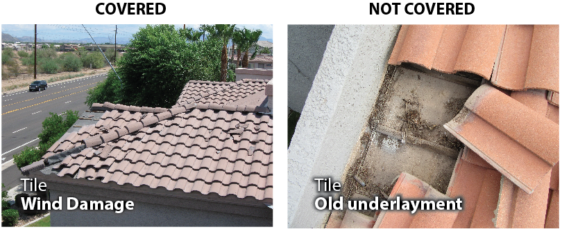 Will My Homeowners Insurance Cover A Roof Leak Phoenix